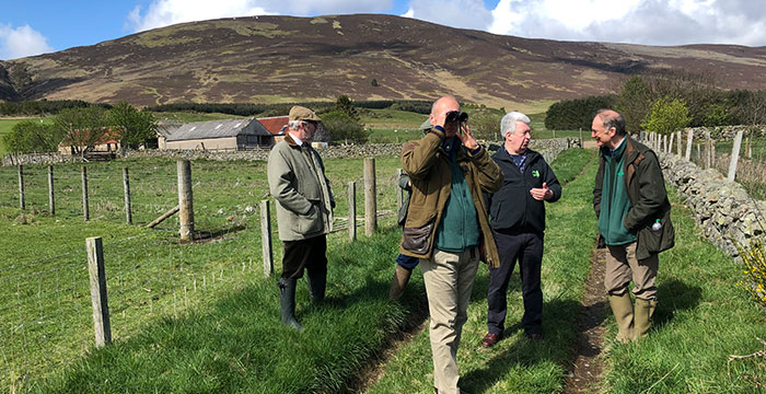 Championing the curlew's cause at Auchnerran