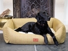 The Red Dog Company – Luxury Dog Beds and Accessories