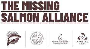 Missing Salmon Alliance