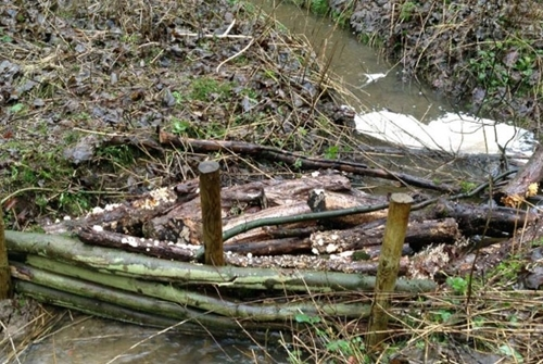 Figure 6: Debris dams made from wood and creating habitats
