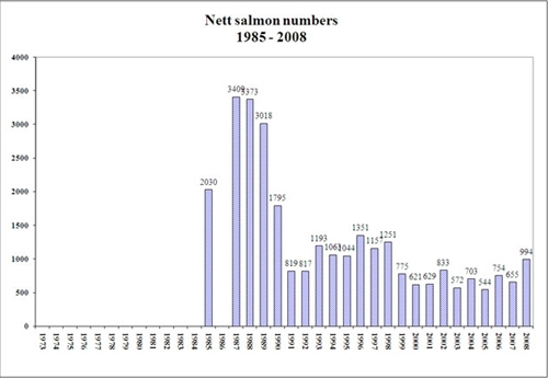 Net Salmon Numbers