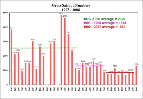 Gross salmon numbers