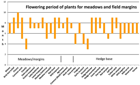Flowering period of plants for meadows and field margins