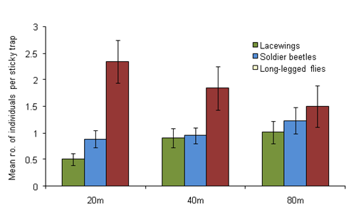 The effect of distance from margin on numbers of predatory insects caught on sticky traps