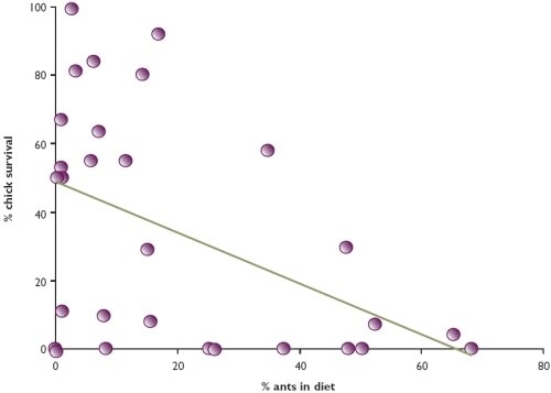 Relationship between the percentage of ants in diet and chick survival for three sites in Norfolk, 2001-2003