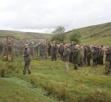 Grey Partridge Re-Introduction Day image