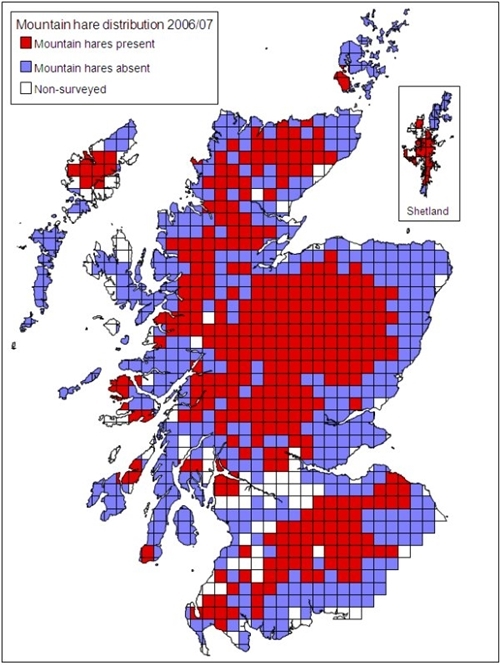 The distribution of mountain hares in 2006/07 in Scotland on a 10x10-km square basis. The use of a 10x10-km square scale resulted in some areas appearing to have mountain hares when in fact they were reported as absent. They are (from north to south) Yell (Shetland), Mainland (Orkney), the Morvern peninsula (adjacent to Mull) and Islay.