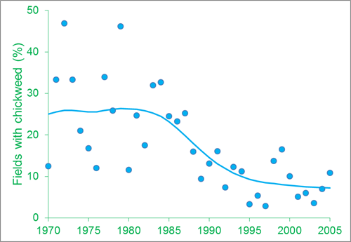 The annual percentage of fields where Chickweed was recorded. From 1986 to 2005 the average percentage of fields where it occurred more than halved compared to the period 1970 to 1985
