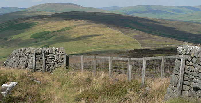 Langholm Moor Demonstration Project