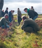 Important GWCT courses this winter