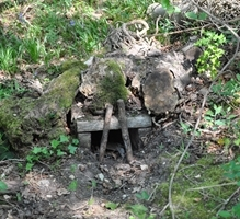 Scottish Tunnel Trapping Course - Kirkcaldy image