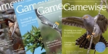 Get the latest Gamewise