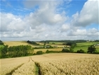 Farmland and wildlife get major boost from new Defra-funded research