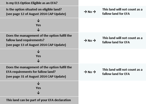 Is my ELS Option Eligible as an EFA?