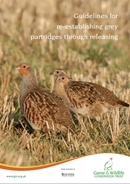 Guidelines for re-establishing grey partridges through releasing