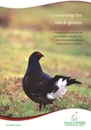 Conserving the black grouse