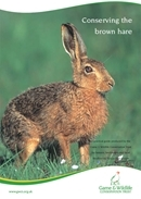 Conserving the brown hare