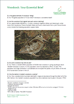 Woodcock fact sheet