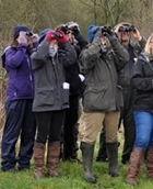 2016 Big Farmland Bird Count – Bird ID Days announced