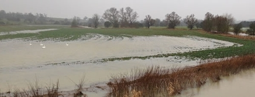 Flooded fields beside the river Welland
