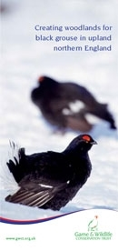 Woodlands for black grouse