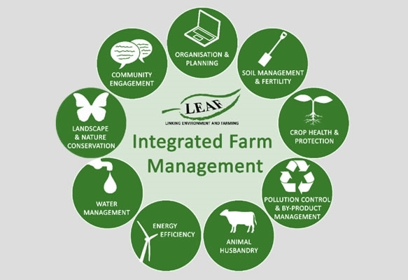 Integrated Farm Management: guest blog by LEAF - Game and Wildlife
