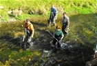 Volunteers needed for salmon tagging on the River Frome