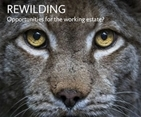 Rewilding on the menu at Scottish Game Fair