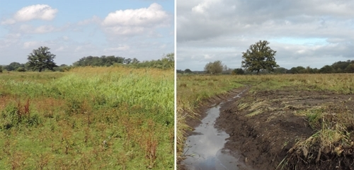 The same location before (left) and after (right) a ditch has been re-dug and vegetation cleared