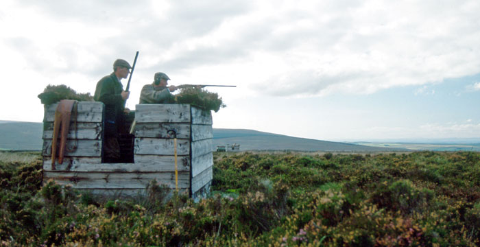 GWCT evidence submission to the 2016 Petitions Committee inquiry into grouse shooting