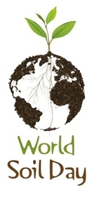World Soil Day - Improving Soils to Boost Crop Productivity