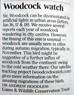 Woodcock Watch Letter