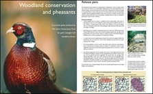 Woodland Conservation And Pheasants - Free Guide