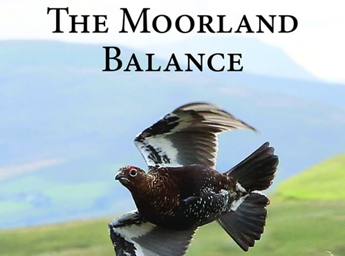 TWThe Moorland Balance - Cover