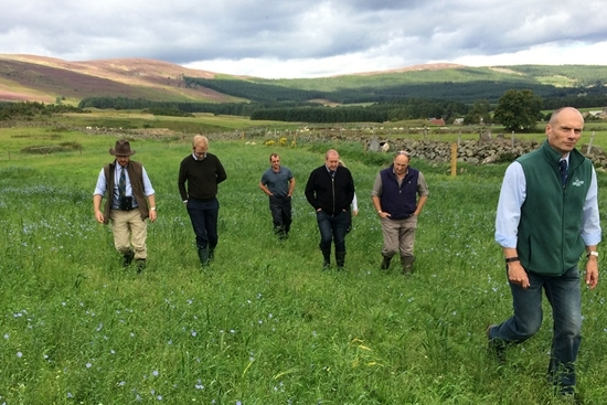 The farm tour through one of the highland cereal game crops