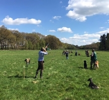 Staffordshire Clay Shoot image