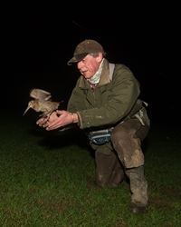 Owen Williams Releasing Ringed Woodcock