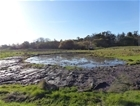 Introducing the Ellingham Floodplain Restoration project
