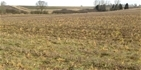 The agricultural benefits of cover crops - a research update