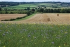 'Farmers key to the future of our environment' says leading conservation charity