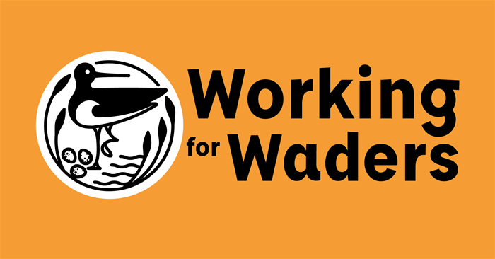 Working for Waders - partnership in action