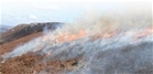 Moor burning on upland peat bogs: Our response to the RSPB