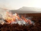 Game & Wildlife Conservation Trust launches Muirburn Advisory Service