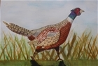 Winners unveiled for GWCT schools' art competition