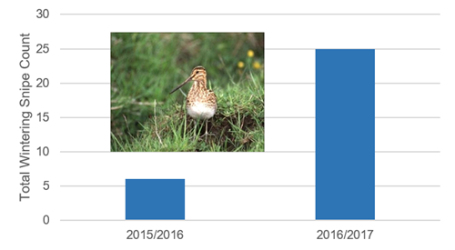 GWCT LIFE Waders For Real _snipe Graph