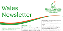 Wales Newsletter