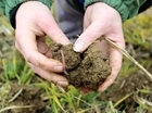 The importance of soil health